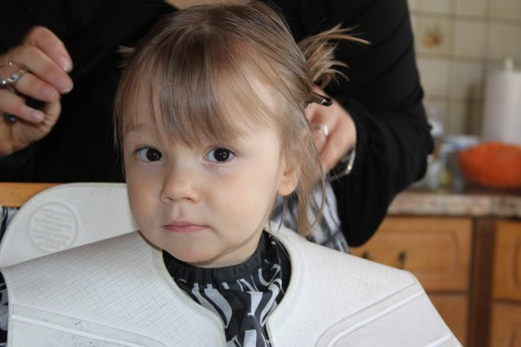 Une petite coupe de cheveux !